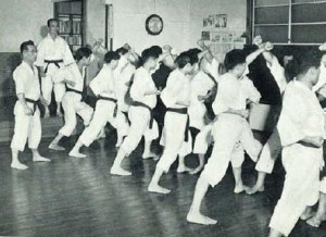 Read more about the article Karate Styles