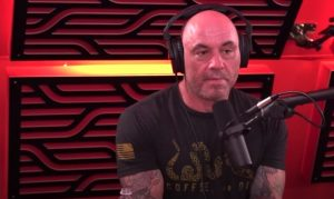 """Read more about the article Joe Rogan was Right: """"We Didn't Make Anything New!?"""""""