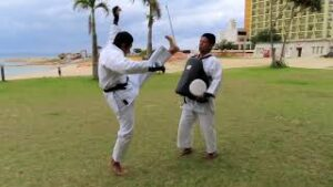 Read more about the article Nidan Bo-Geri